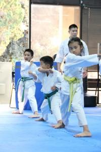 Butokuden Dojo Enshin Karate